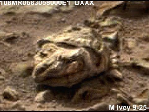 alien artifacts on mars - photo #32