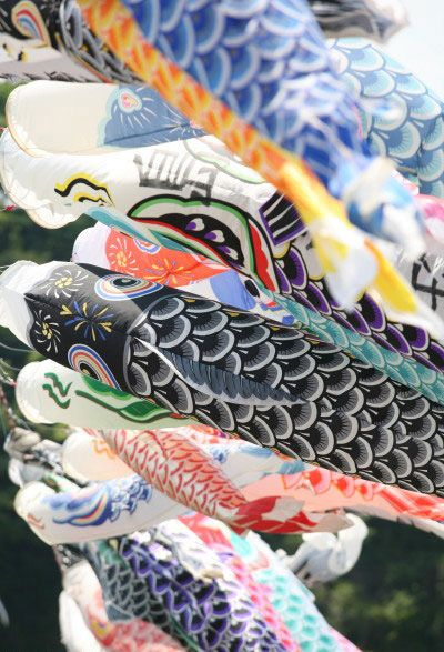Koinobori Colorful, carp-shaped streamers or wind socks displayed on Boy's Day, May 5th.