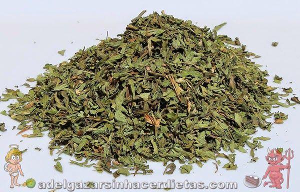 Cómo hacer stevia casera líquida y en polvo con esta receta saludable y fácil baja en calorías y apta para diabéticos.