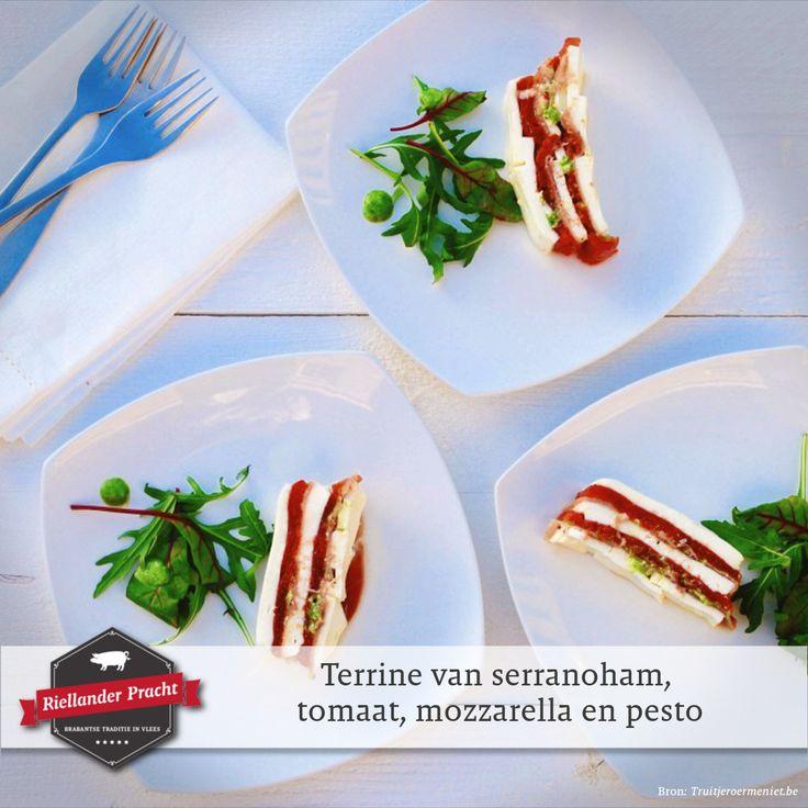 Deze keer presenteren we een recept voor een voorgerecht waar je goed mee voor de dag komt. Niet alleen erg lekker, maar ook nog eens ideaal als je een keertje een grote groep gasten op bezoek krijgt.  Recept voorgerecht: Terrine met serranoham, mozzarella, geroosterde tomaat en zelfgemaakte pesto  Voor het recept en meer inspiratie, check de site.  #varkensvlees #serranoham #recept #recepten #eten #koken #food #recipes #pork