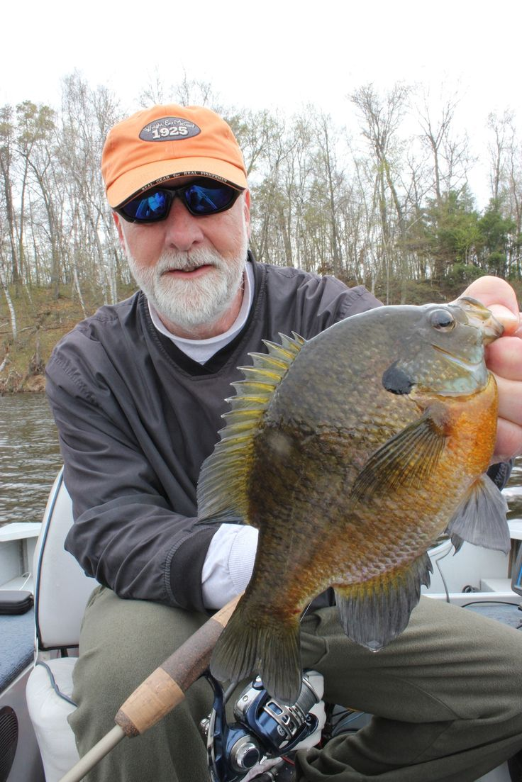17 best images about fishing for panfish on pinterest for Indiana crappie fishing