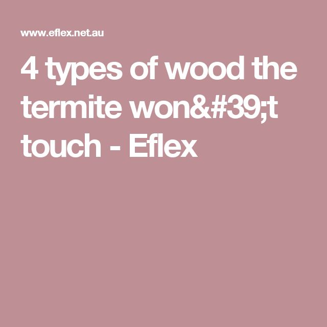 4 types of wood the termite won't touch - Eflex