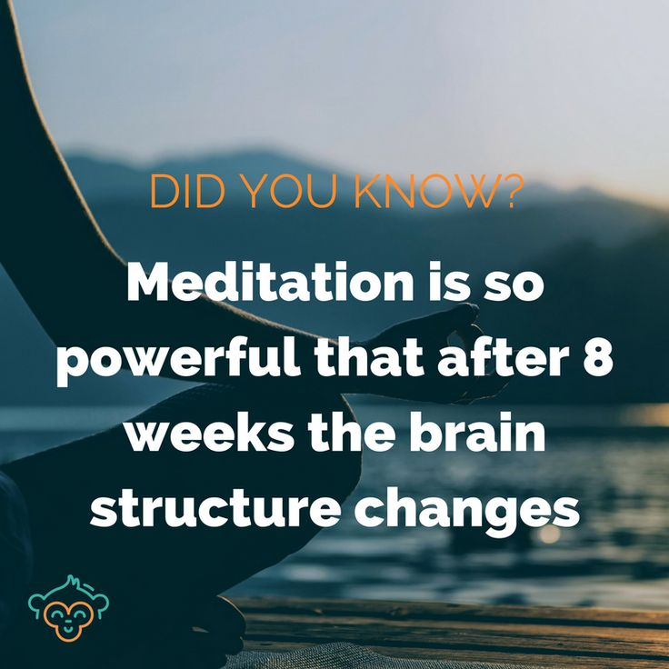 A study conducted by Harvard researchers found that meditating for just 8 weeks changes the structure of your brain in five different places. #brain #meditation #wellbeing #healthfacts #didyouknow #didyouknowfacts #health #LifeBuddi