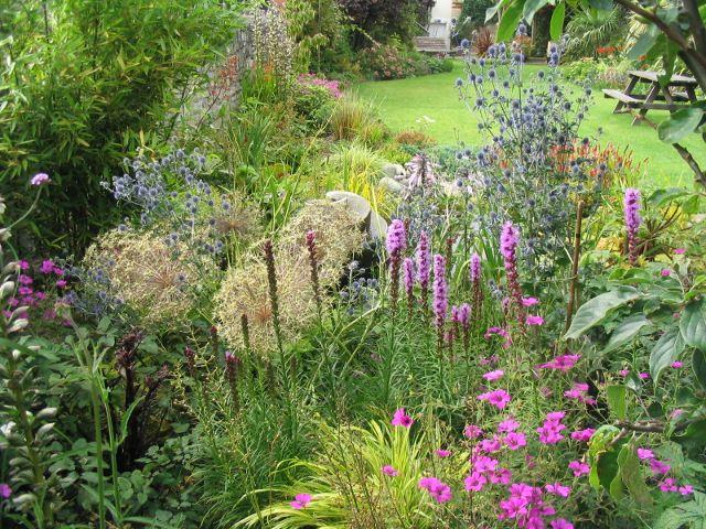 Garden design by Cornwall designer based in Falmouth | Town Family Garden