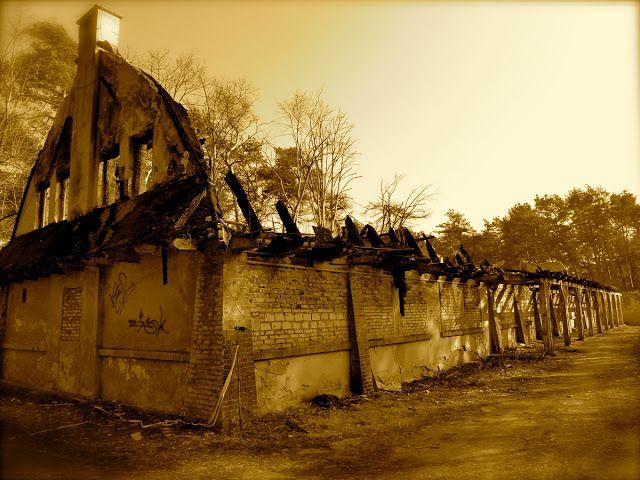 "Sanatorium ""Olin"" w Otwocku   digitalpoland"