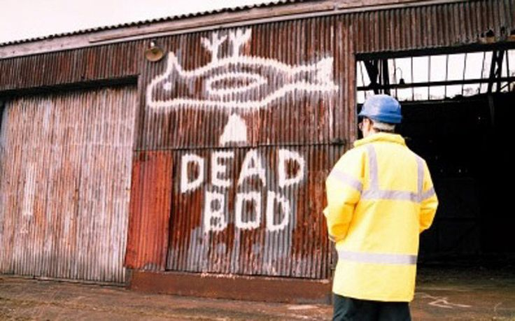 An online campaign to save the cherished mural of a dead bird on a rusting   dockyard shed in Hull is the latest rush of affection for unexpected works   of art