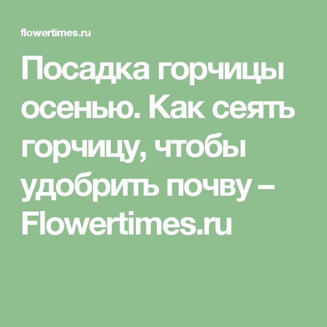 Посадка горчицы осенью. Как сеять горчицу, чтобы удобрить почву – Flowertimes.ru