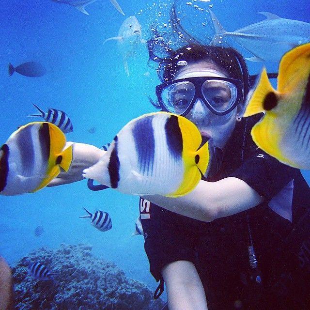 #Underwater #SubaDiving #Cruises #VarietyCruises Photo credits:  @bbjihye