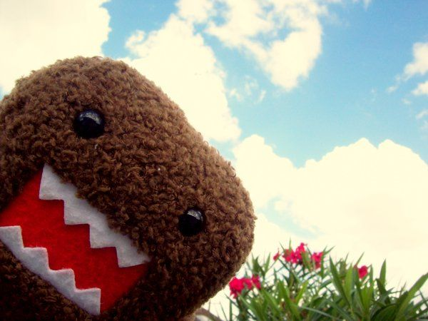 Domo!Animal Lovers, Favorite Celebrities, Favorite Things, House With, Domo Sun, Domo Chill, Domo Arigato, Domokun, Animal Obsession