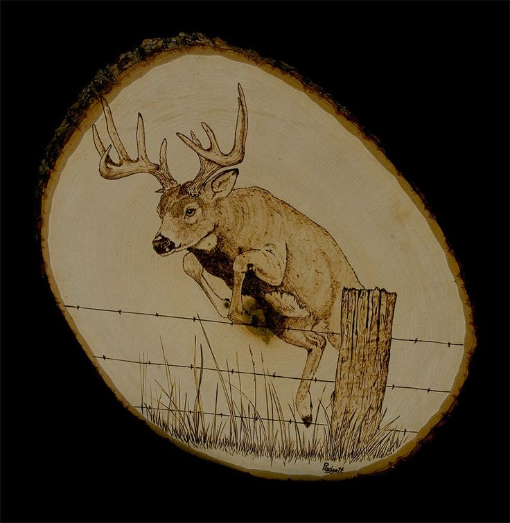 Famous pyrography Art   Up And Over Pyrography