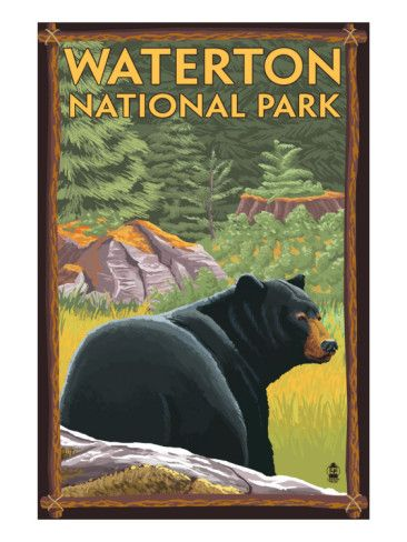 Waterton National Park, Canada, a vintage travel poster we saw our only Grizzly bear there!
