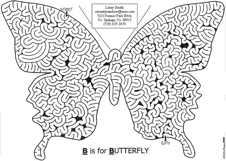 Image detail for -Can you find your way around the Butterfly maze?