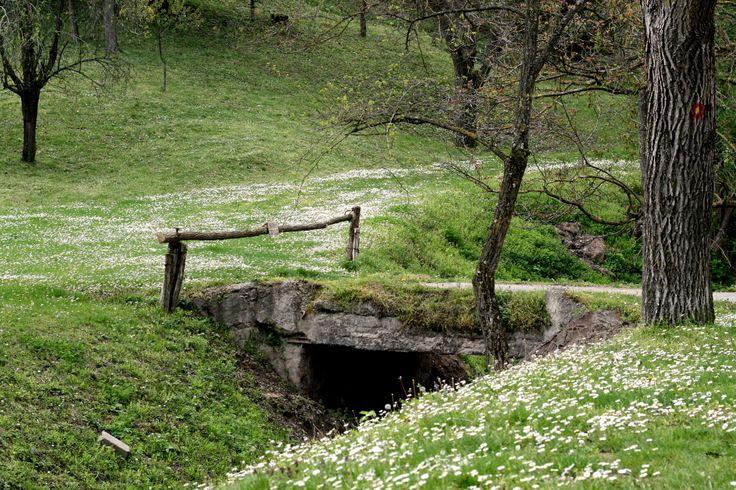 Serbia, near monastery Jazak...
