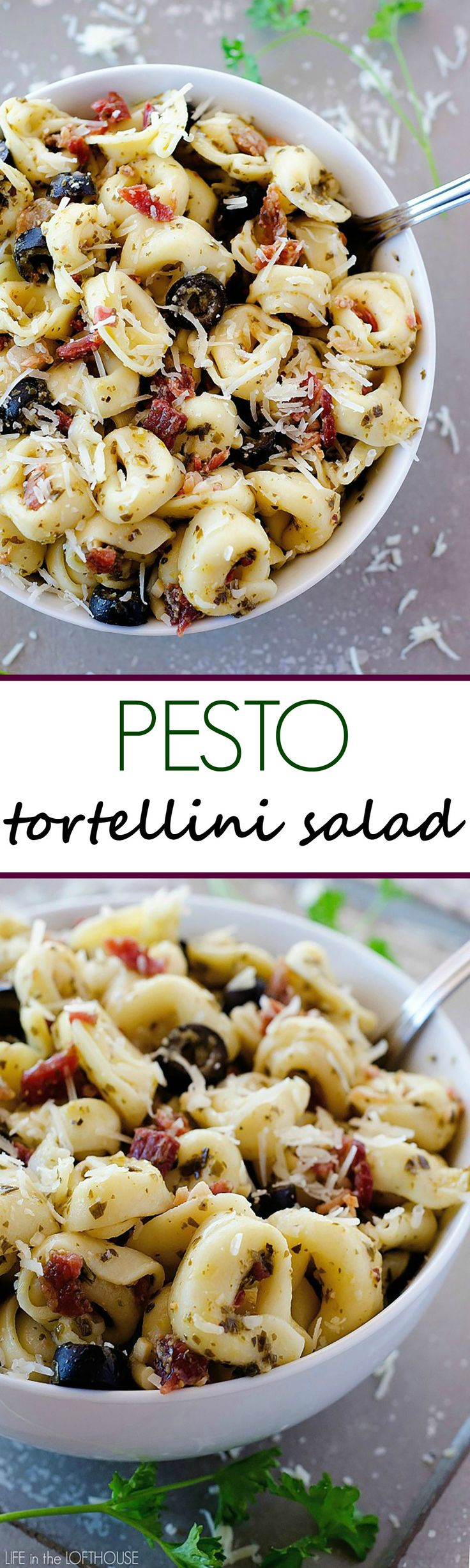 This pasta salad is covered in pesto, bacon, cheese and olives. It is always the first to go when I serve it