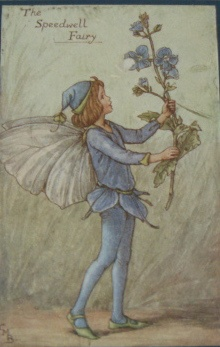 Cicely Mary Barker fairy