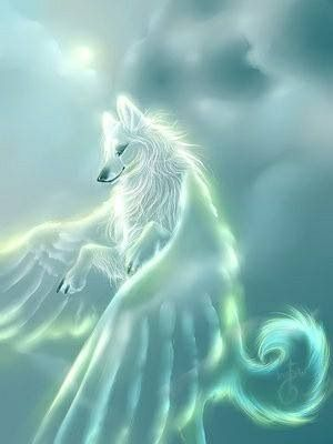 88 Best Wolf With Wings Images On Pinterest Wolves Wolf