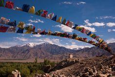 #travel #inspiredtraveller #adventure #wanderlust #ladakh #leh #lehladakh