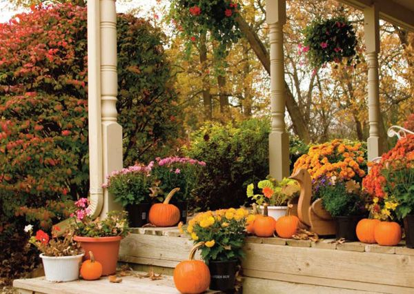 Fall Decorations | Fall Garden Decoration Ideas Photograph | Fall Seasonal  Idea - 29 Best Thanksgiving Decorations Images On Pinterest Fall