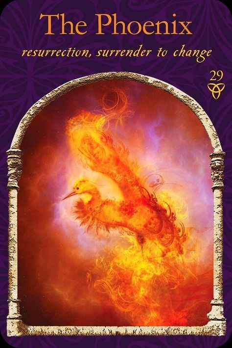 The Phoenix, from the Wisdom Of The Hidden Realm Oracle Card deck, by Colette Baron-Reid