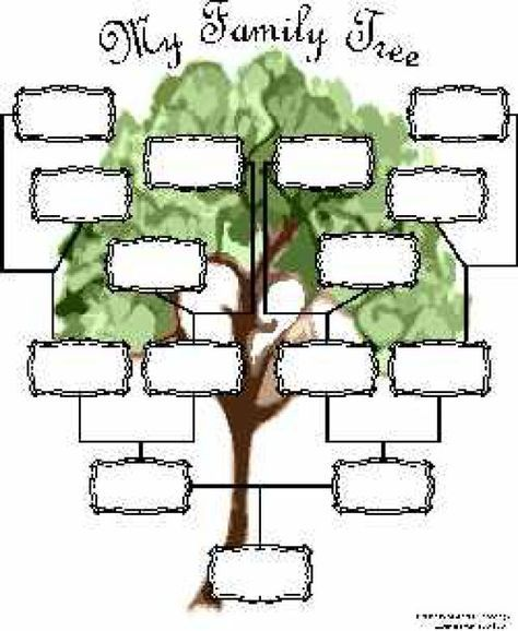 34 best family tree templates images on Pinterest Family tree - blank family tree template