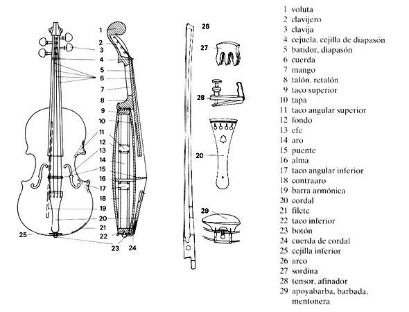 El violín y sus partes