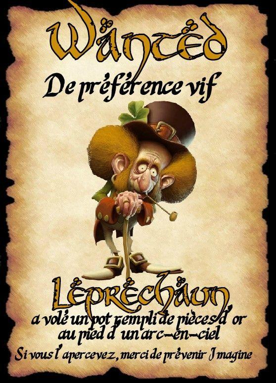affiche leprechaun 2