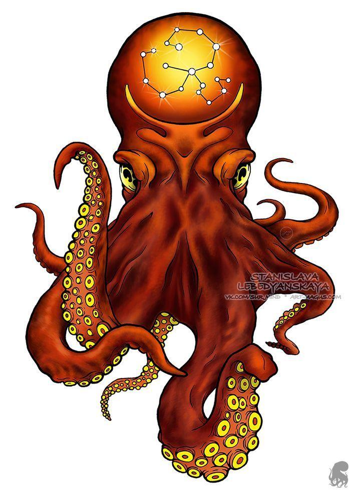 Octopus Tattoo Sketch Tattoo Sketch Octopus T Octopus Octopustattooneotraditional ศ ลปะ การ ต น การออกแบบรอยส ก