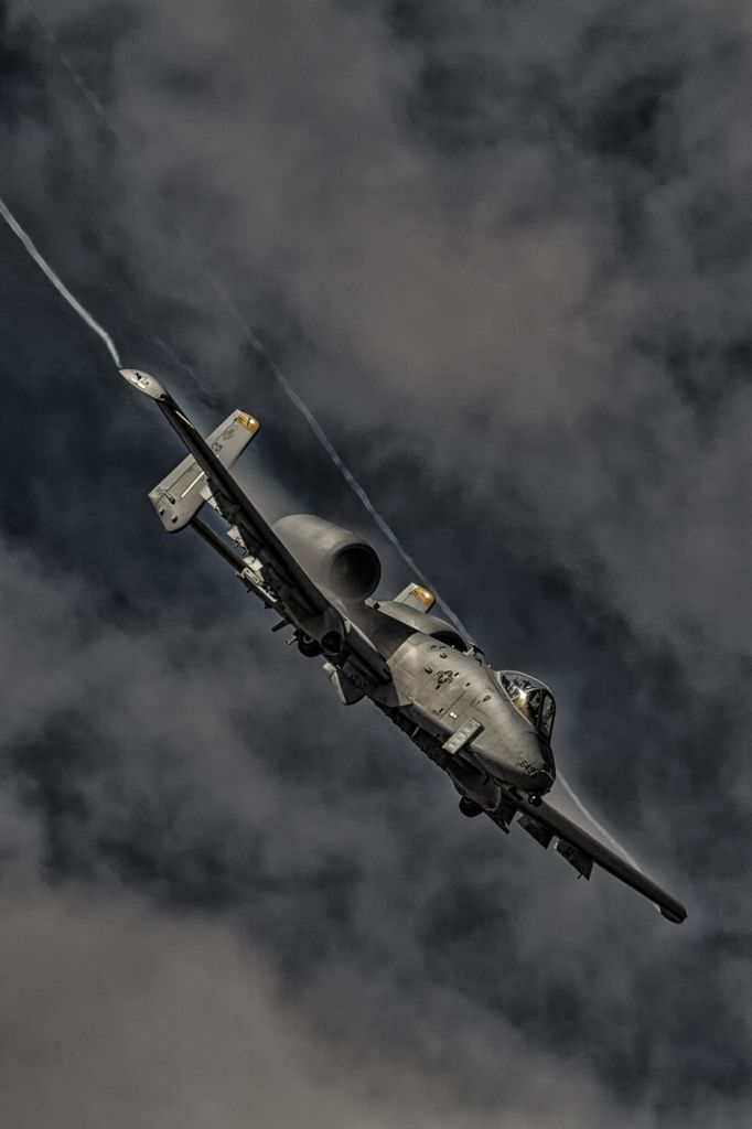 """titanium-rain: """"A-10 Warthog """" [Shout out to the pair of Hildisvini from the Maryland Air National Guard that went screaming past at low altitude today on their way home from the live fire range...."""