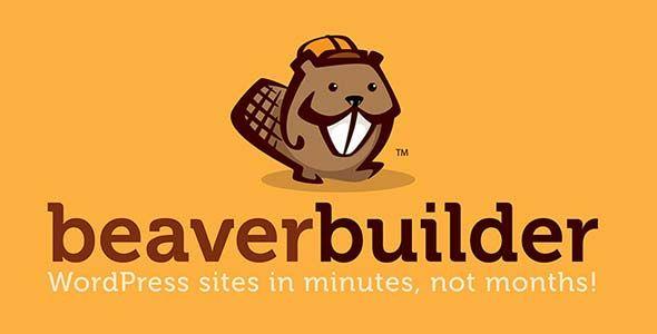 افزونه صفحه ساز وردپرس Beaver، با قابلیت و کارآیی های منحصر به فرد دارای محبوبیت فراوانی بین وردپرسی ها دارد، که هر روز به محبوبیت بیشتری در بین کاربران دست پیدا می کنند. قبلا افزونه های مشابه دیگری همچون ویژوال کامپوزر و افزونه Yellow Pencil را که جزو صفحه سازهای ووکانرس هستند را در سایت وردپرس تولز قرار داده بودیم. #وردپرس #وردپرس_تولز #ووکامرس #صفحه_ساز #بیوربیلدر #افزونه #پلاگین #طراحی_سایت #قالب