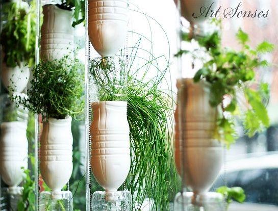 Домашна билкова градинка от пластмасови бутилки | Art senses – артистични идеи за интериор и градина