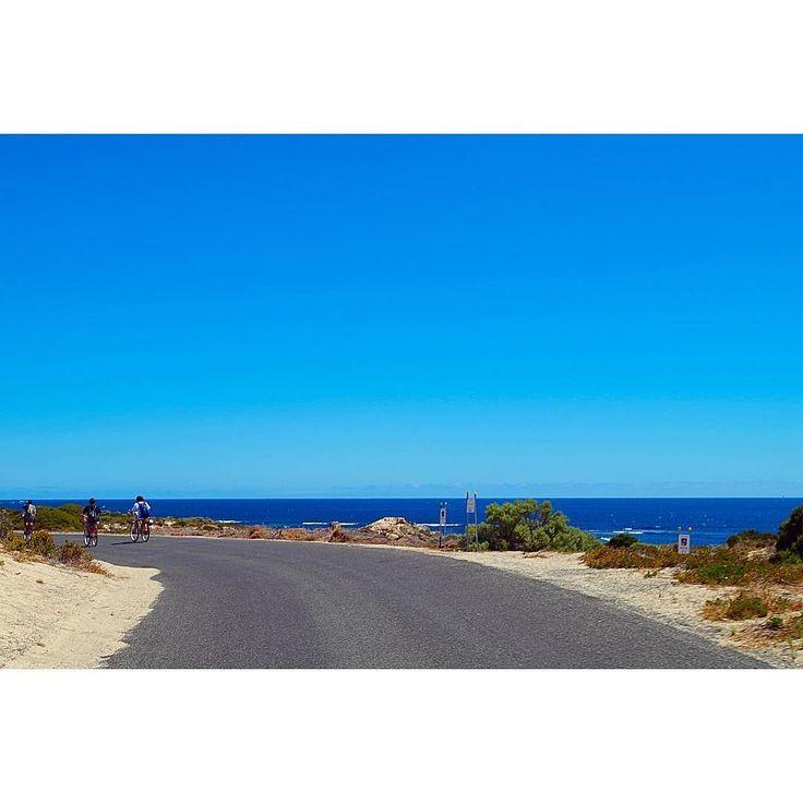 in rottnest island  どこをとっても絶景な島を 自転車でほぼ島一周#部活か この島でゆっくりしたい  #australia #rottnest #rottnestisland #sea #cycling  #オーストラリア #ロットネスト島 #自転車 #島 by racco2121 http://ift.tt/1L5GqLp