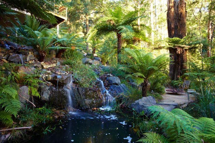 15 Best Billabongs Natural Pools Images On Pinterest Natural Pools Natural Swimming Pools