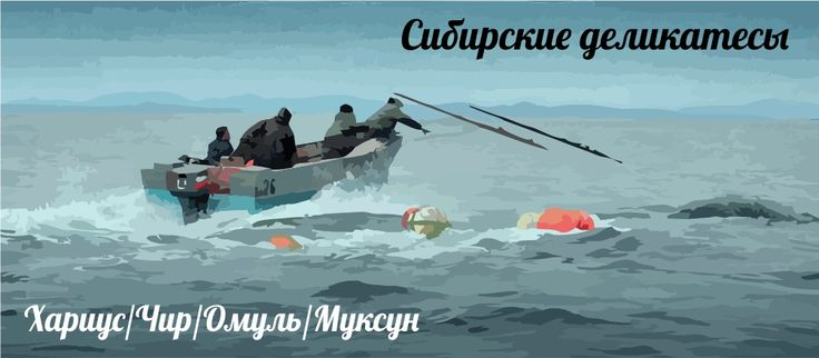 Sibirian delicatessen fish