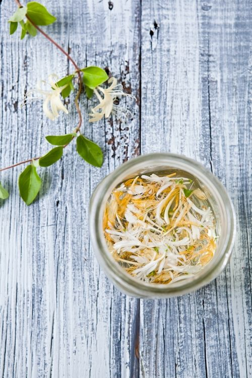 Honeysuckle and jasmine syrup | Edible Flowers: Pantry | Pinterest
