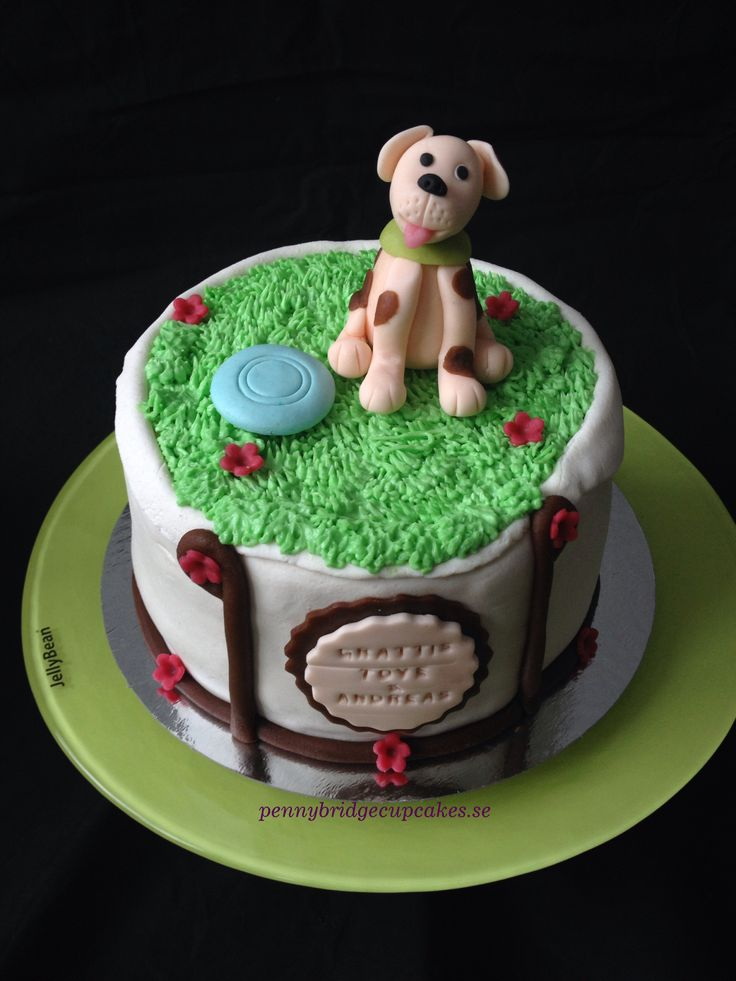 Dog and frisbee cake