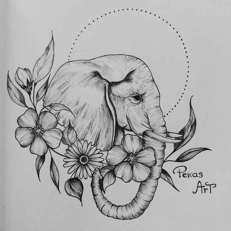 Diseño de mi primer elefante. @pekasart  https://m.facebook.com/pekasart?ref=bookmarks