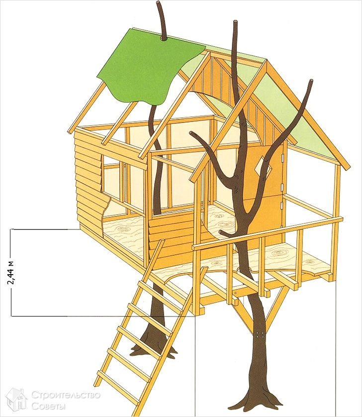the schema in the tree house