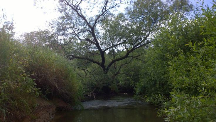 Czech Adventures event - The river