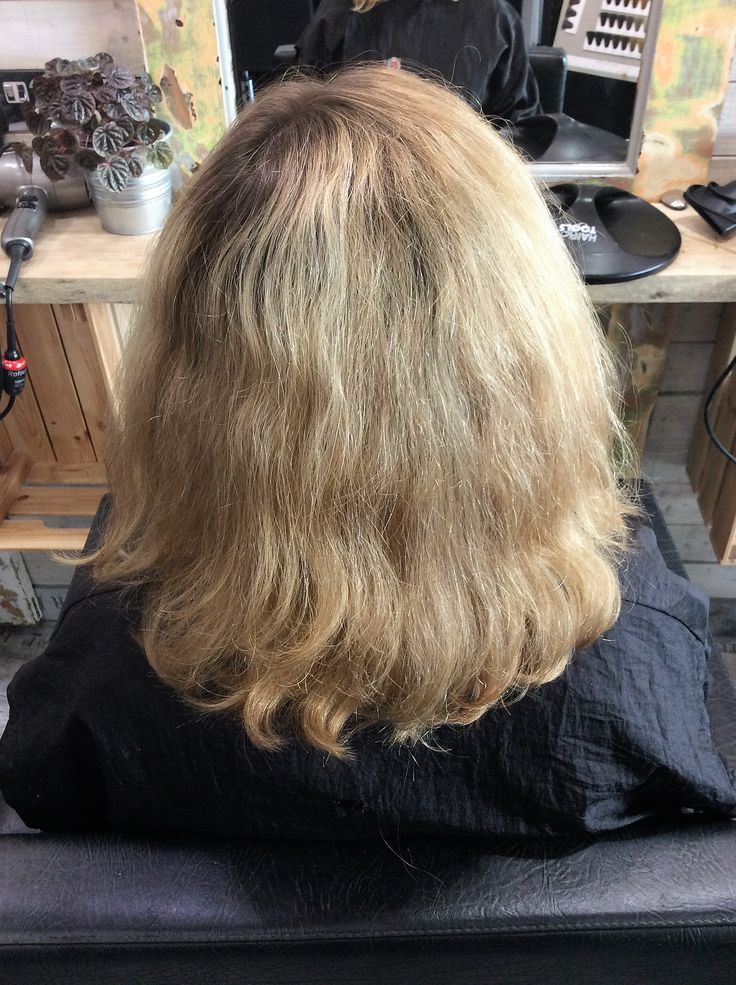 Client's hair before Davines Pre Pigment application #sdhair #davines #prepigment #before