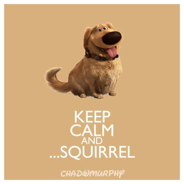 Keep Calm & ...Squirrel