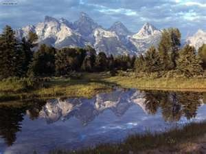 Nature: Grand Teton Reflections Yellowstone, picture nr. 23139
