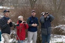 Get Involved in the Christmas Bird Count - Find a Count Near you | National Audubon Society Birds