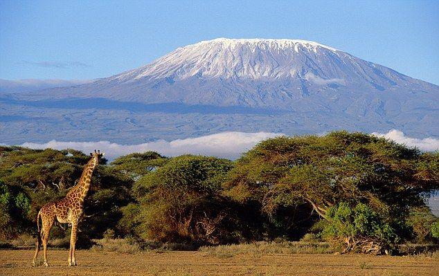 http://www.mara-boutique.ro/ro/oferte/detalii/748/safari_in_muntele_kilimanjaro/Kenya/Muntele%20Kilimanjaro