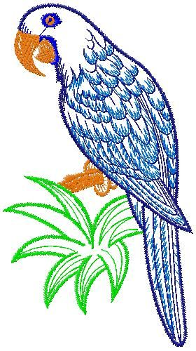parrot-embroidery-design
