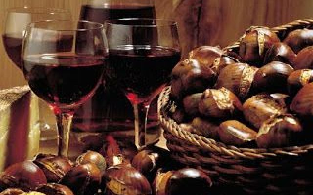 ...Vini in festa tra vendemmie e degustazioni!! Dalla Valtellina all'Etna, dal Monferrato al Salento, dalla Liguria al Friuli la produzione di vino italiano di quest'anno è prevista in deciso rialzo. La qualità è ottima e i dati, forniti dall'Unio #vini #vendemmia #degustazione