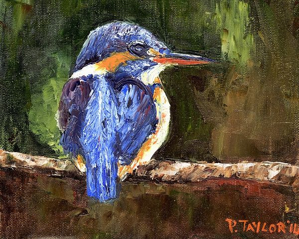 Kingfisher, Oil on Canvas