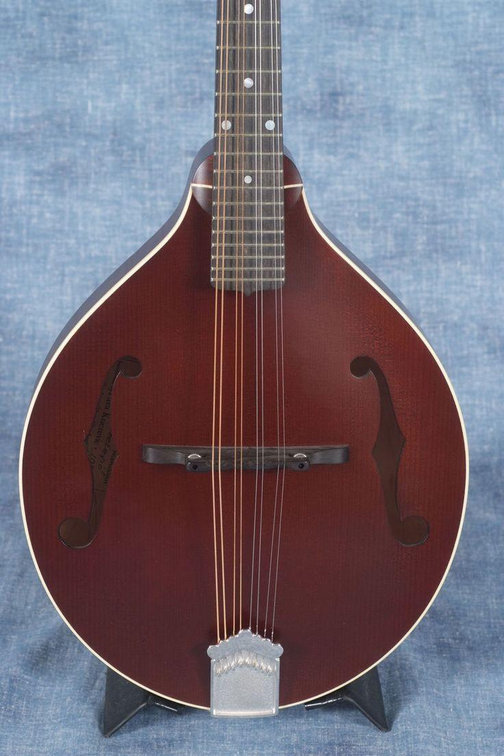73 best mandolin images on pinterest mandolin guitar and bathroom pava satin model a mandolin case shopworn elderly instruments hexwebz Images