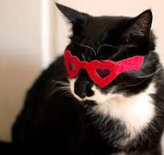 Image result for heart sunglasses