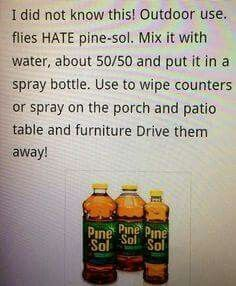 Flies hate PineSol, use in spray bottle, 50/50 water. Enjoy your summer more.