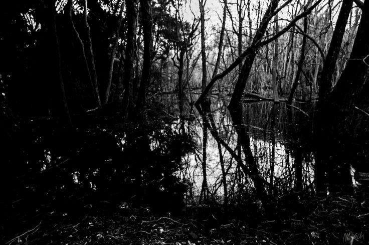Mau Chi Photographer - Absence